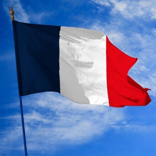 Drapeaux de la France